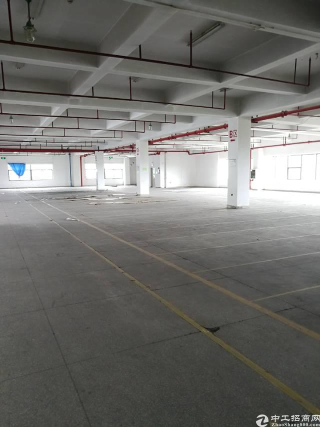 横岗六约楼上带精装修2000平米厂房招租