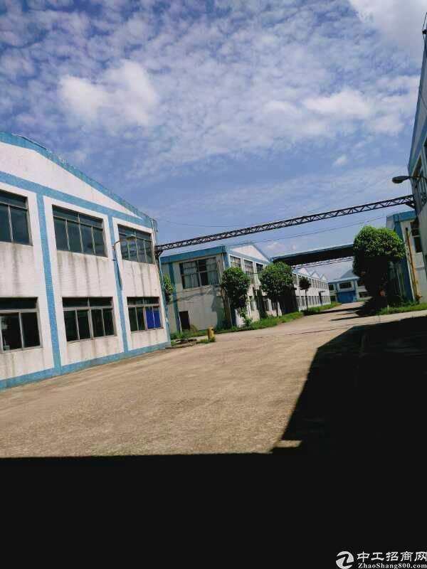 1.5万平米独院厂房滴水12米高-图3