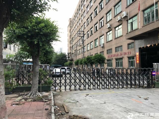 虎门南栅村委标准厂房出租楼高6.5米有牛角带航车线路齐全
