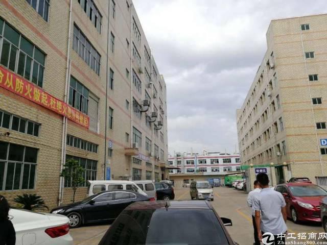 莞长路边工业园厂房4250㎡出租