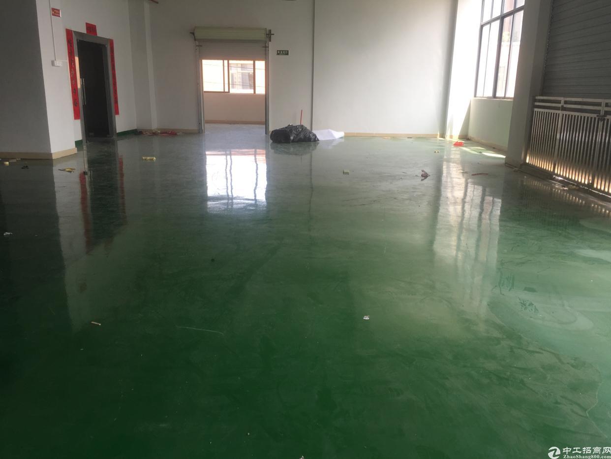 大岭山杨屋村原房东厂房出租,实际面积700平方,现成装修办公