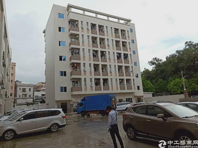 大岭山园区标准厂房2楼分租1000平米