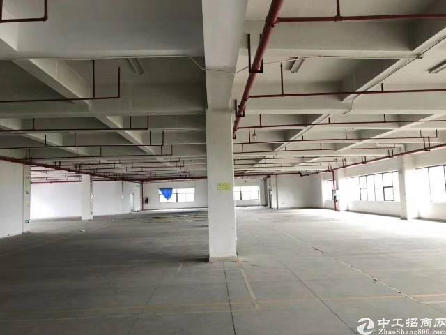 横岗四联社区1000平标准厂房出租
