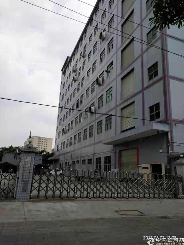 路东原房东独院厂房分租二层,每层3000平