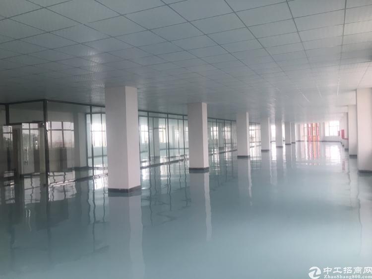 大朗高速路口新出带豪华装修办公室重工业厂房