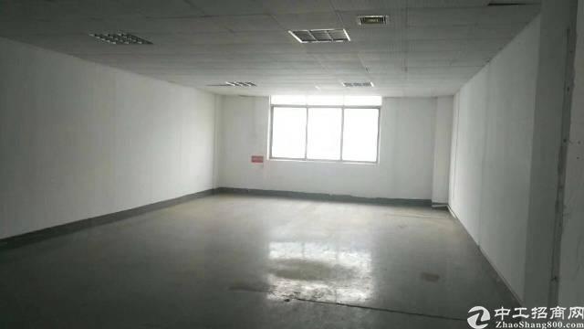 沙井镇中心路写字楼2000平方,大小分租