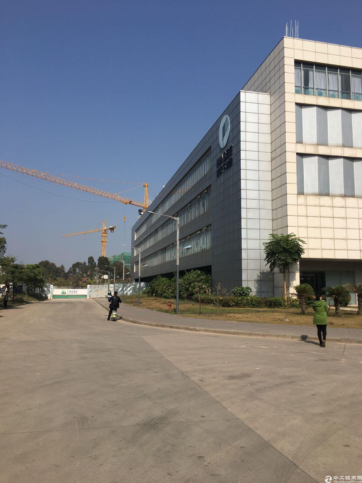 坂田万科城旁边标准厂房一楼5000平方370平方以上分租
