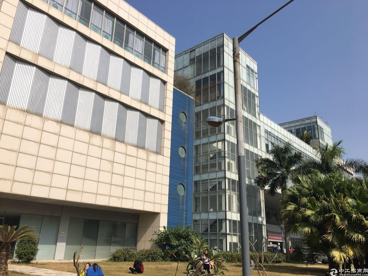 坂田万科城旁边标准厂房一楼5000平方370平方以上分租-图3
