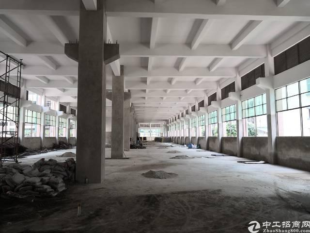 东莞虎门新出重工业厂房,1到6层每层2560平米,承重一吨。