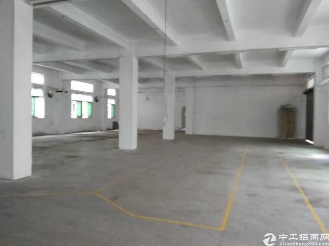 横岗新出一楼厂房850平带办公室高度5.5米价格26块