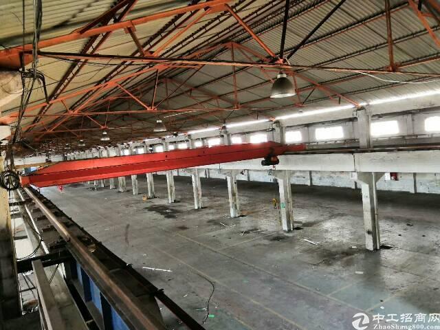 横沥镇新诚工业区标准钢构厂房