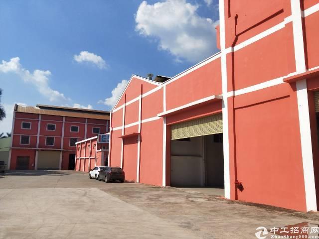 大朗镇沙埗村新出厂房出租1500平方米