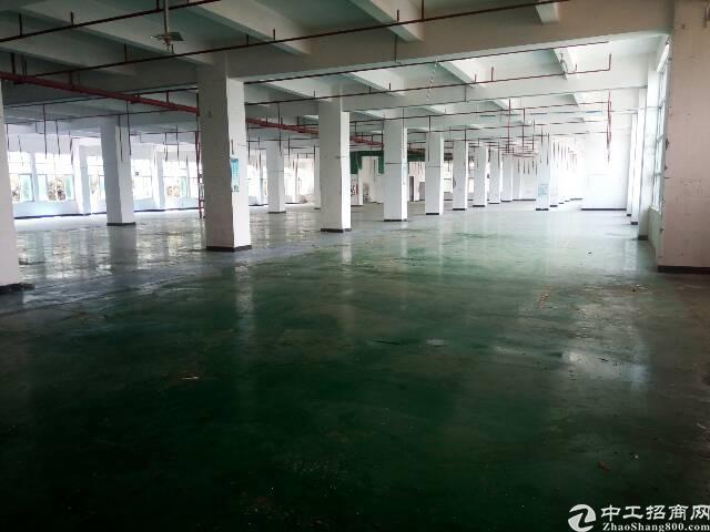 华南城边上新出独栋三层1680平米厂房出租