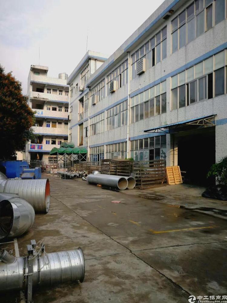 横岗新出一楼面积950坪带装修