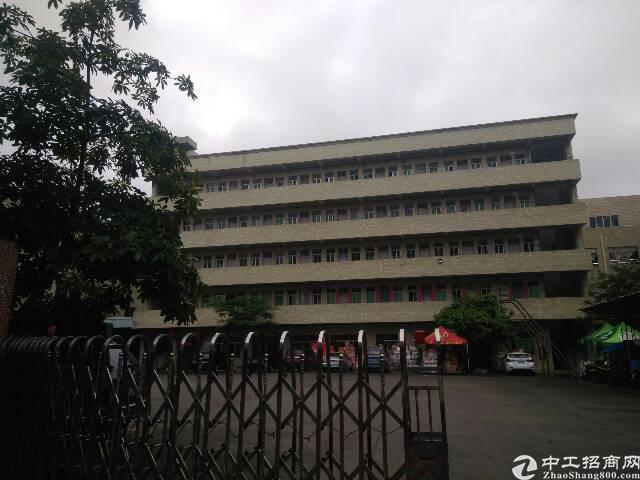 虎门镇北栅一楼500平厂房出租