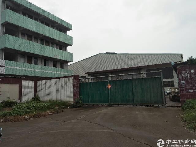 单一层钢结构厂房独院招租