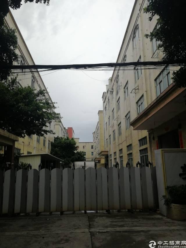 福永和平二楼带装修厂房1000平方出租