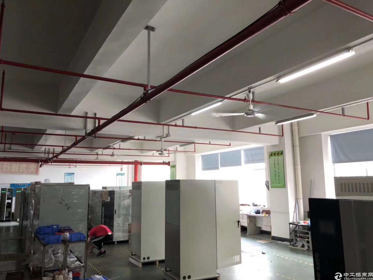 龙华大浪商业中心附近1500平精装修厂房出租,实用率8成-图4