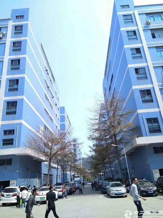 西乡固戍高新园区3300平方整层面积出租,园区总面积达36万