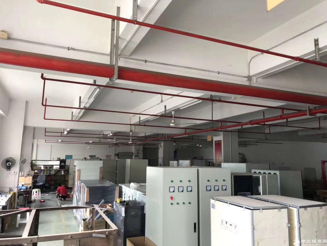 龙华大浪商业中心附近1500平精装修厂房出租,实用率8成-图3