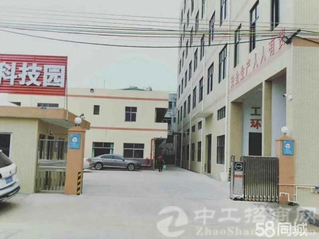 原房东标准厂房4层出租共6000平方