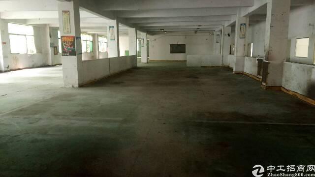 福永白石厦新出一楼250平