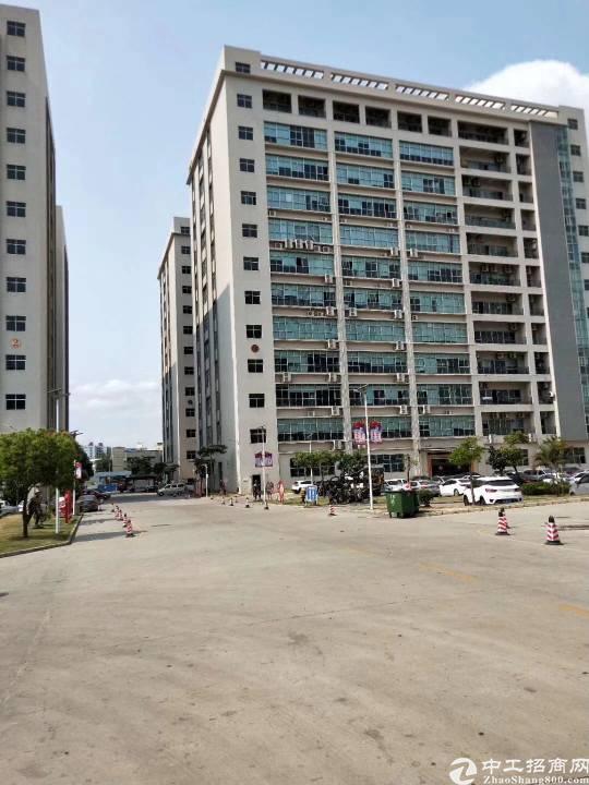 沙井镇洪田高速出口新出楼上1000平方,租金19