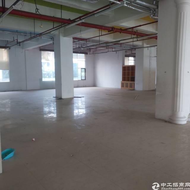 福永凤凰靠107国道2000平精装写字楼出租