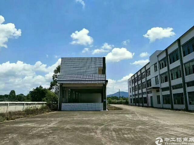 稀有大面积独院厂房招租6.6万平方米-图5