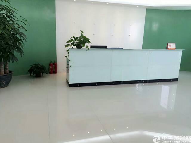 公明南光高速出口新出楼上1600平方带装修厂房出租-图5