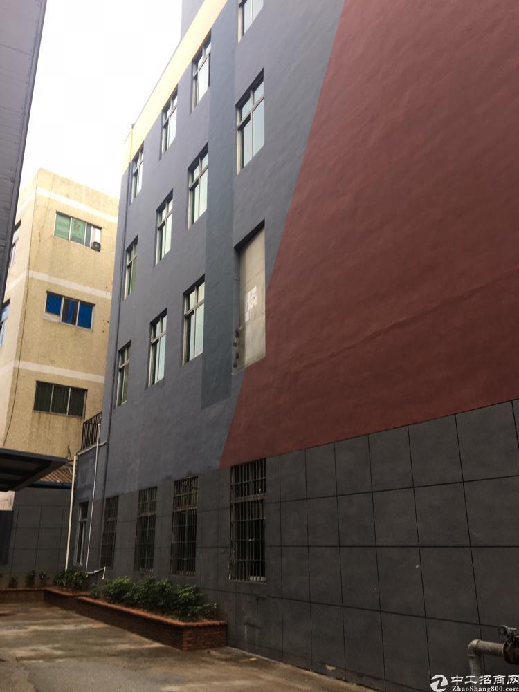 凤凰美盈精装修写字楼260平米可做办公贸易