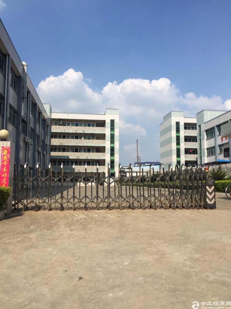 横沥镇新诚  工业区 全新独院厂房5800平方