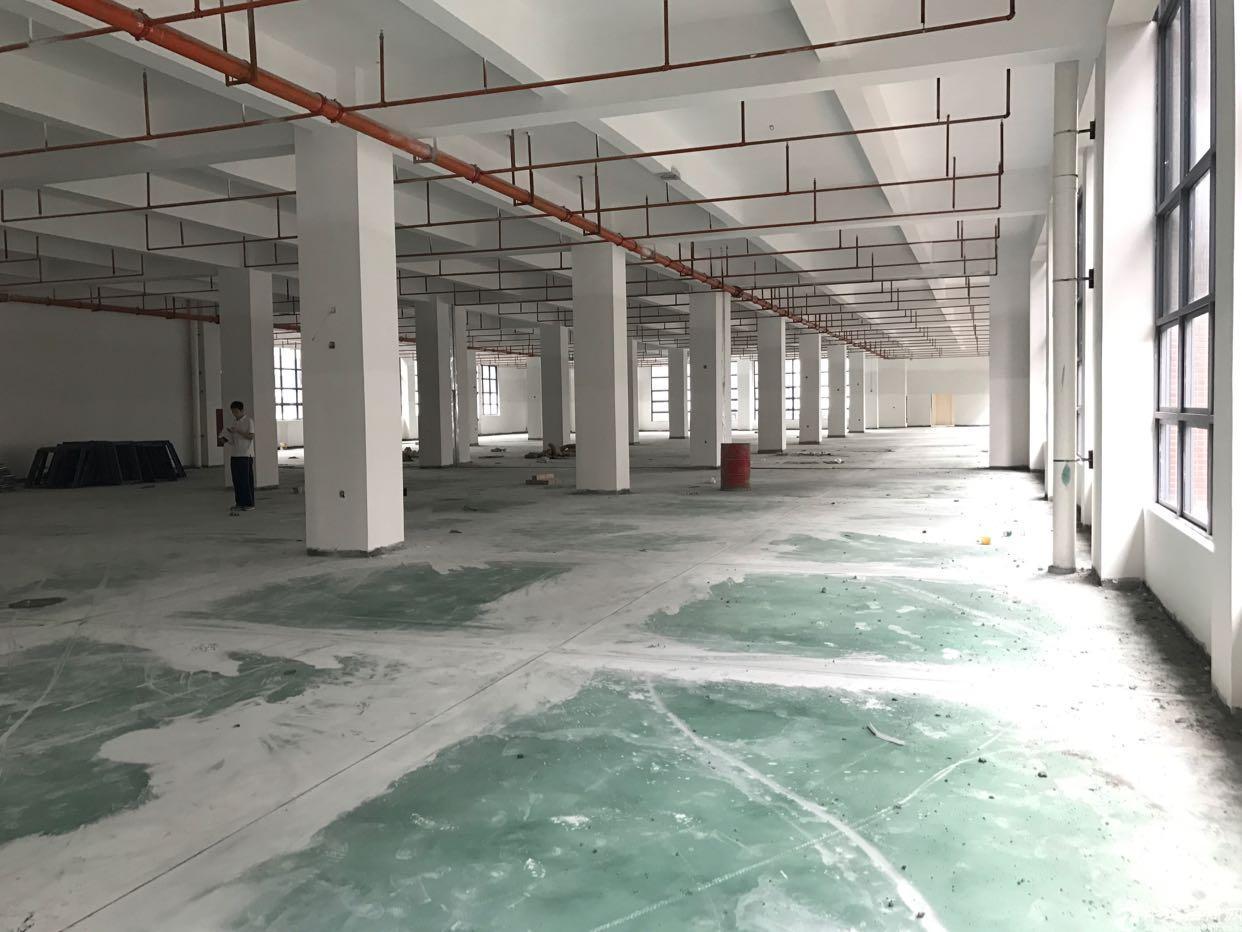 松岗红本新建厂房出租,面积39600平米。独院可分租