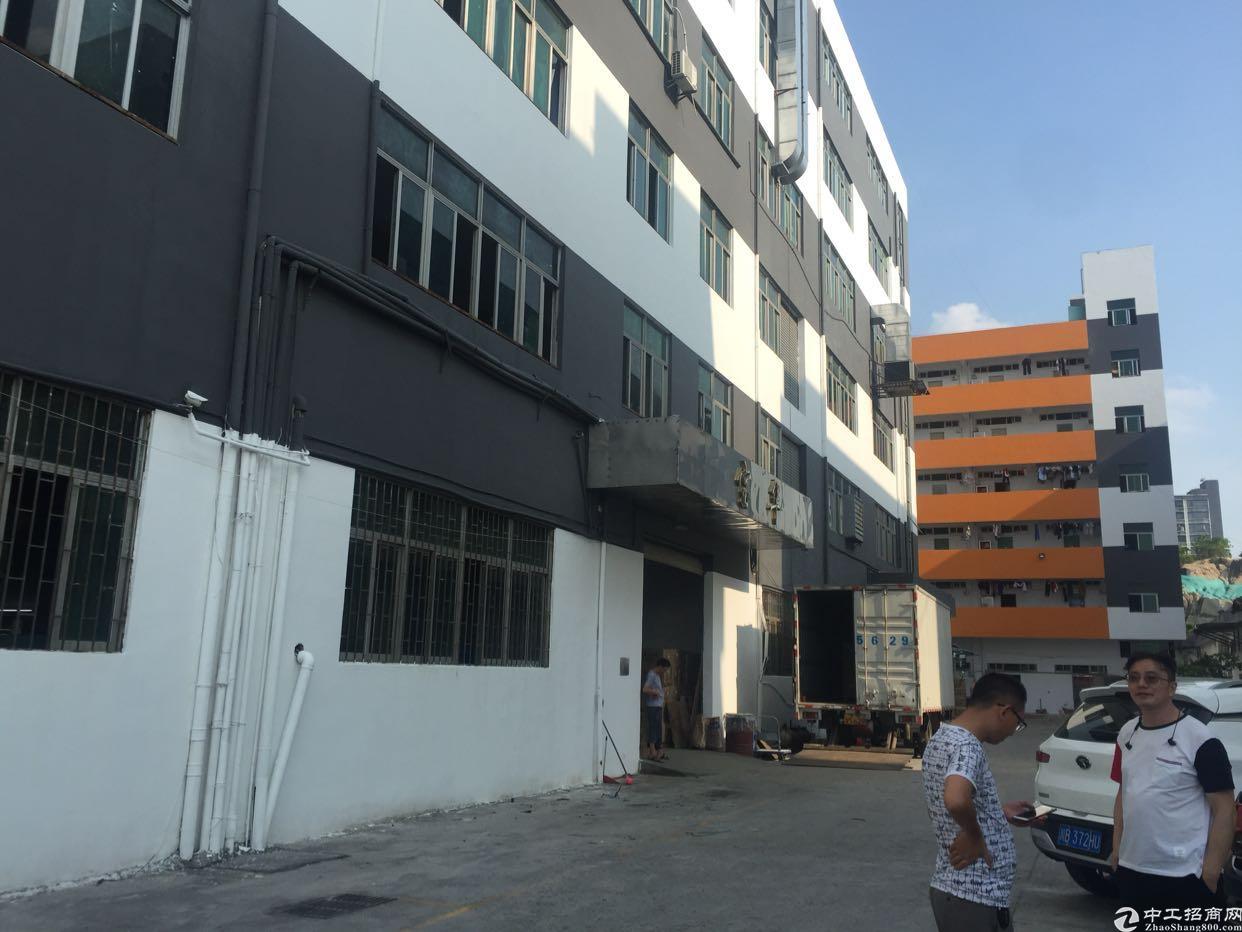 鹤山大型工业区楼上2000平厂房出租