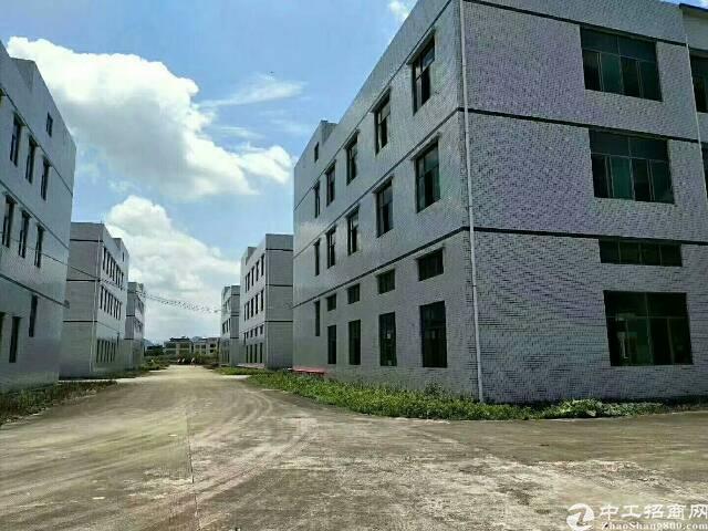 稀有大面积独院厂房招租6.6万平方米-图3