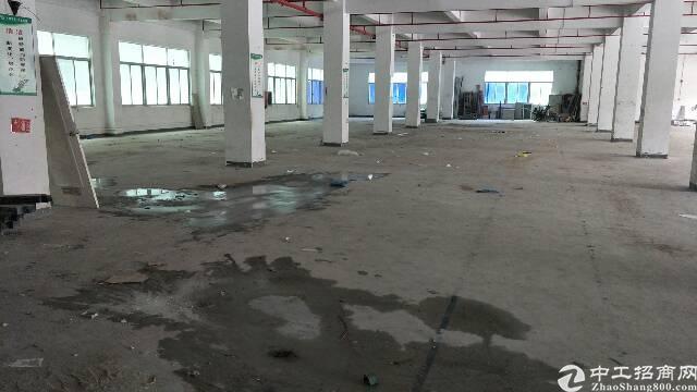 龙岗坪地独栋厂房7500平方出租,带装修-图6