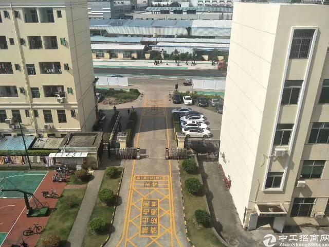 油松电商创业园大面积办公室招租80-150-300