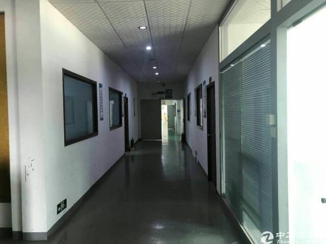 福永和平楼上精装修1800平方整层厂房出租