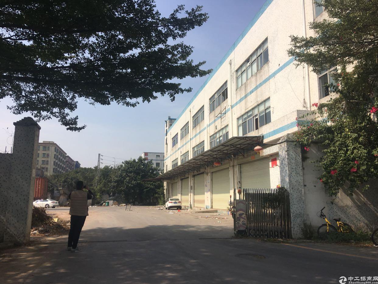 福永凤凰山附近107国道边原房东独院3000平招租