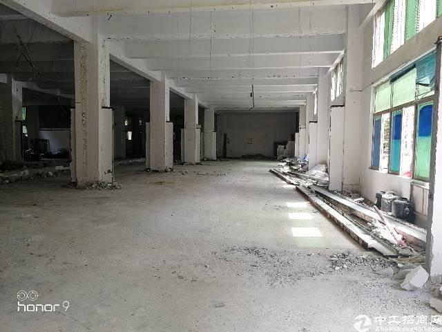 福永塘尾大型园区一楼1700平