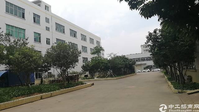 仲恺中心区建筑12000双证厂房出售
