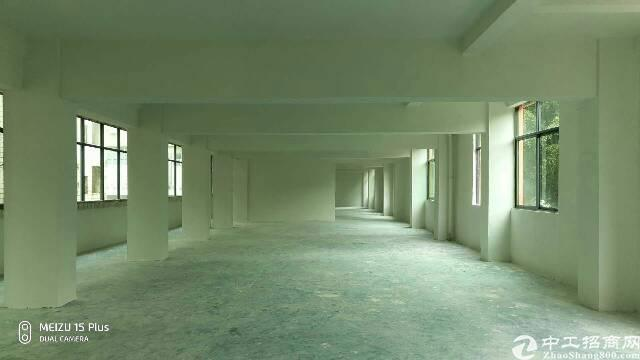 石岩水田独层600平米厂房出租