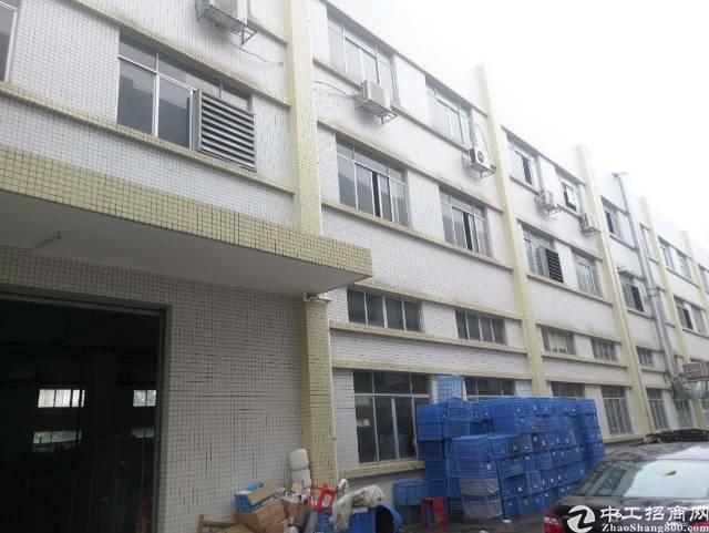 石碣一楼1300平米厂房招租