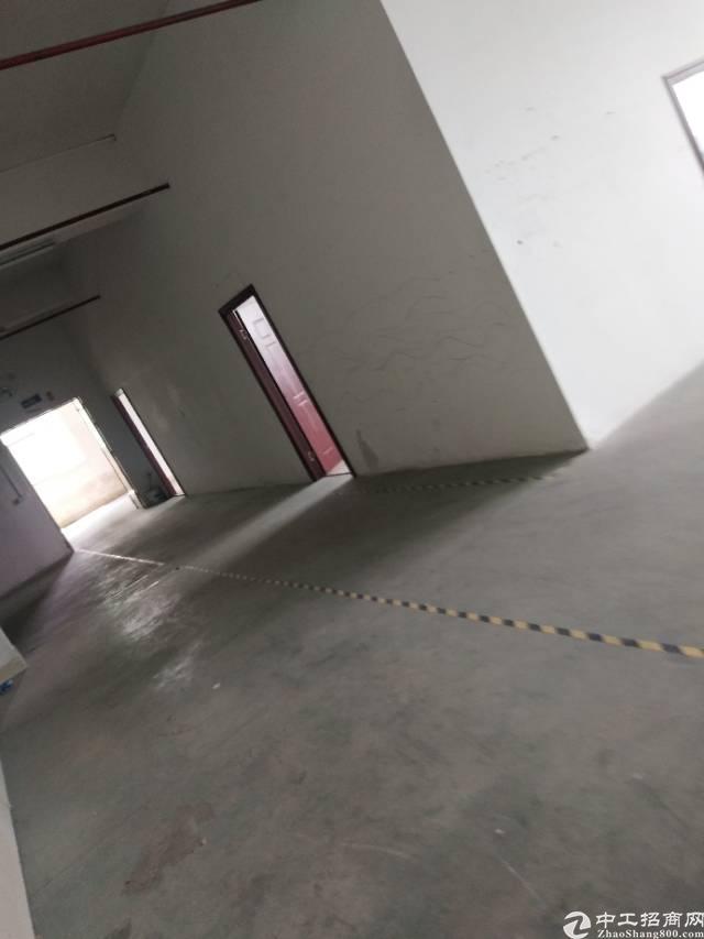 龙华汽车站后面新出厂房650平带卸货平台交通方便可做电子仓库