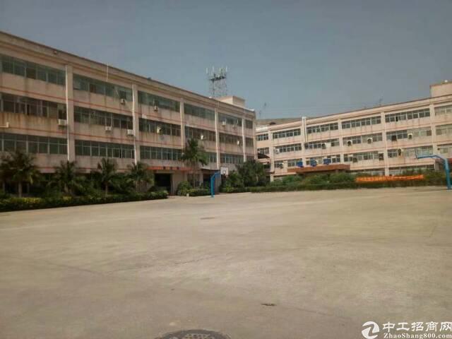 龙岗大型工业园区1000平1500平精装修厂房出租-图4
