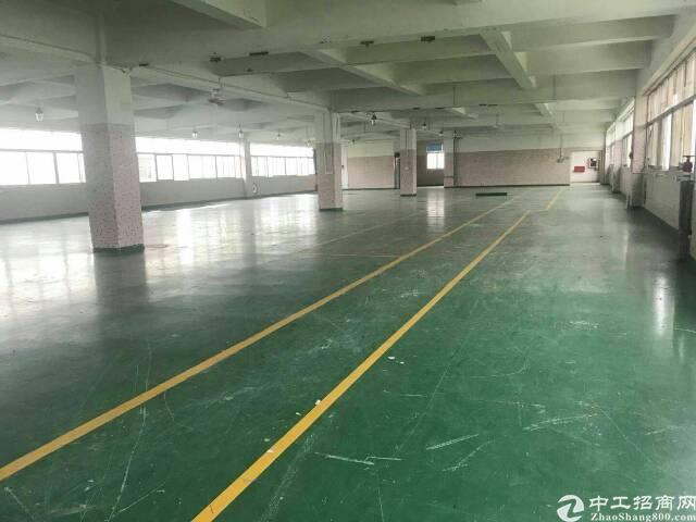 龙岗大型工业园区1000平1500平精装修厂房出租-图5
