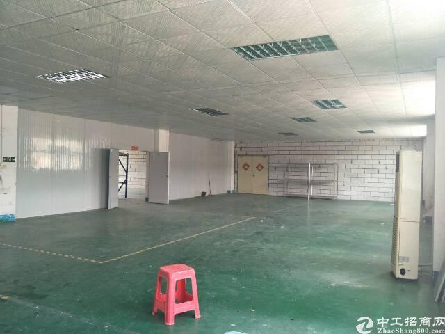 坪山坪葵路旁新出楼上整层1100平现成办公室带装修-图6