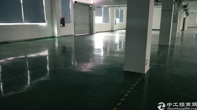 观澜观光路边工业园独栋1-2层2600平米厂房