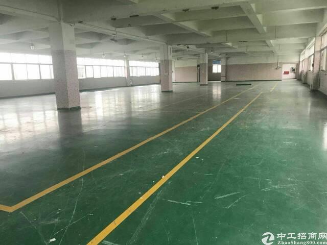 龙岗大型工业园区1000平1500平精装修厂房出租