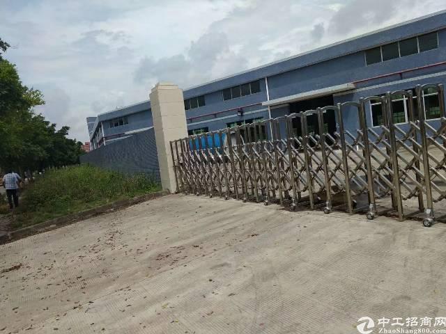 龙华清湖新出单一层钢构5000平,可分租,空地超大